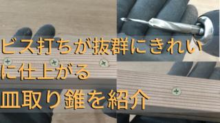 皿取 錐 紹介